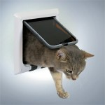 En helt normal kattelem (foto lavprisdyrehandel.dk)